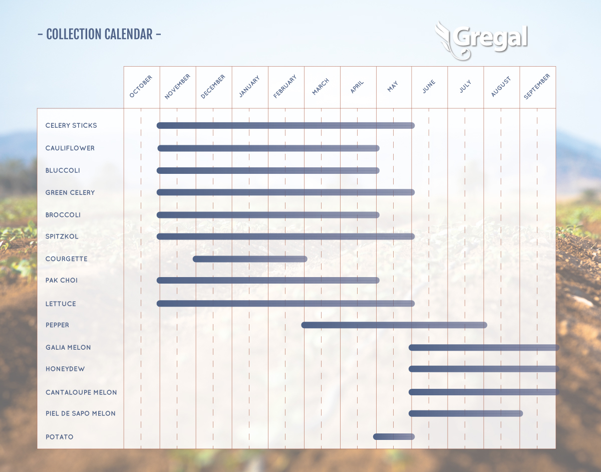 Collection Calendar Gregal